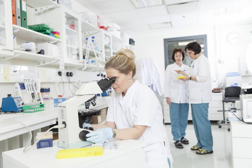 Picture from the research laboratory