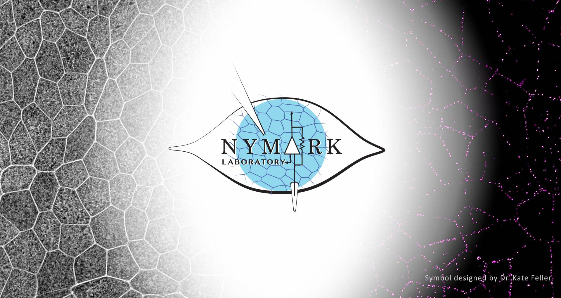 Nymark Front Page